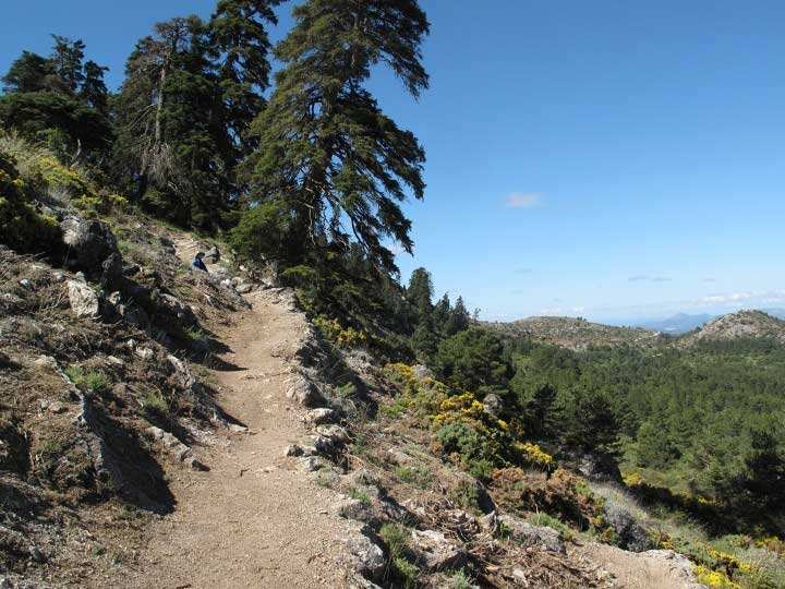 Best Hikes in the Ronda area